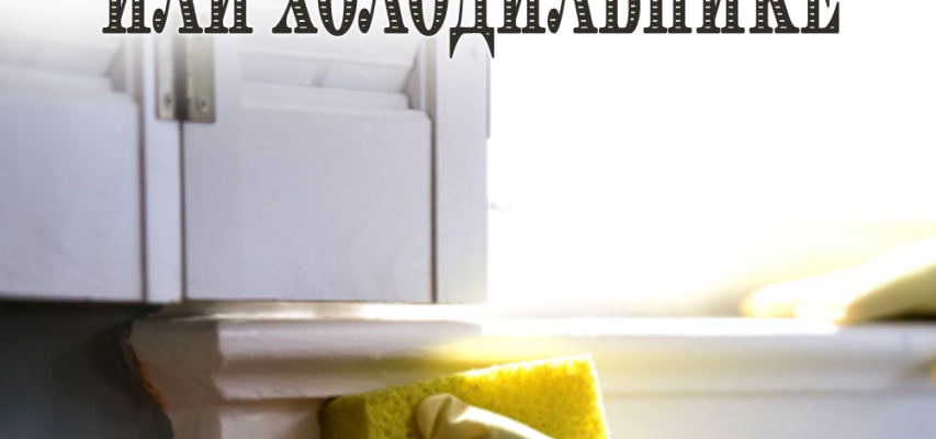 Отбелить холодильник или подоконник можно: простой и быстрый метод