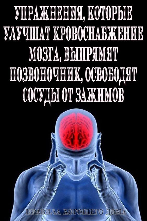 Упражнения, которые улучшат кровоснабжение мозга, выпрямят позвоночник, освободят сосуды от зажимов