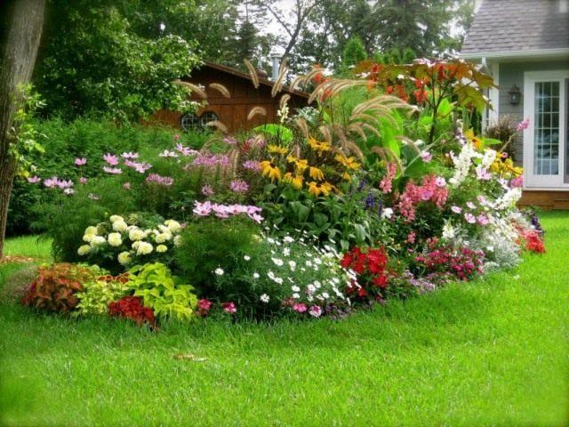 Плотные посадки в пейзажном стиле — «культурные» заросли