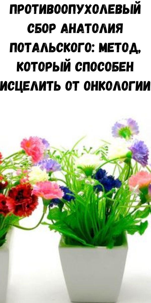 Противоопухолевый сбор Анатолия Потальского: метод, который способен исцелить от онкологии