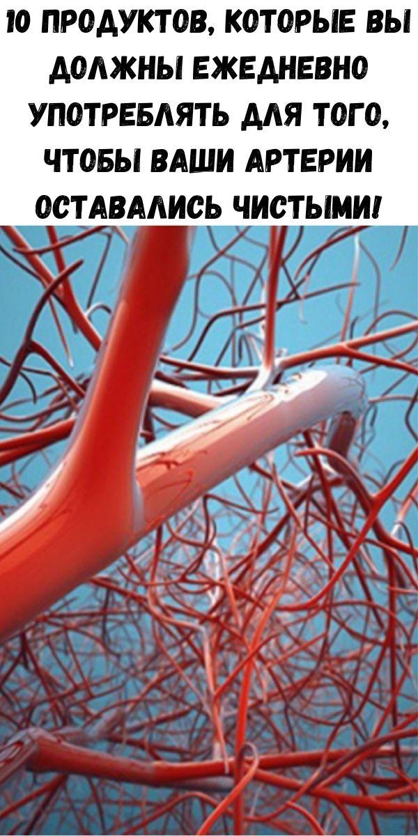 10 продуктов, которые вы должны ежедневно употреблять для того, чтобы ваши артерии оставались чистыми!