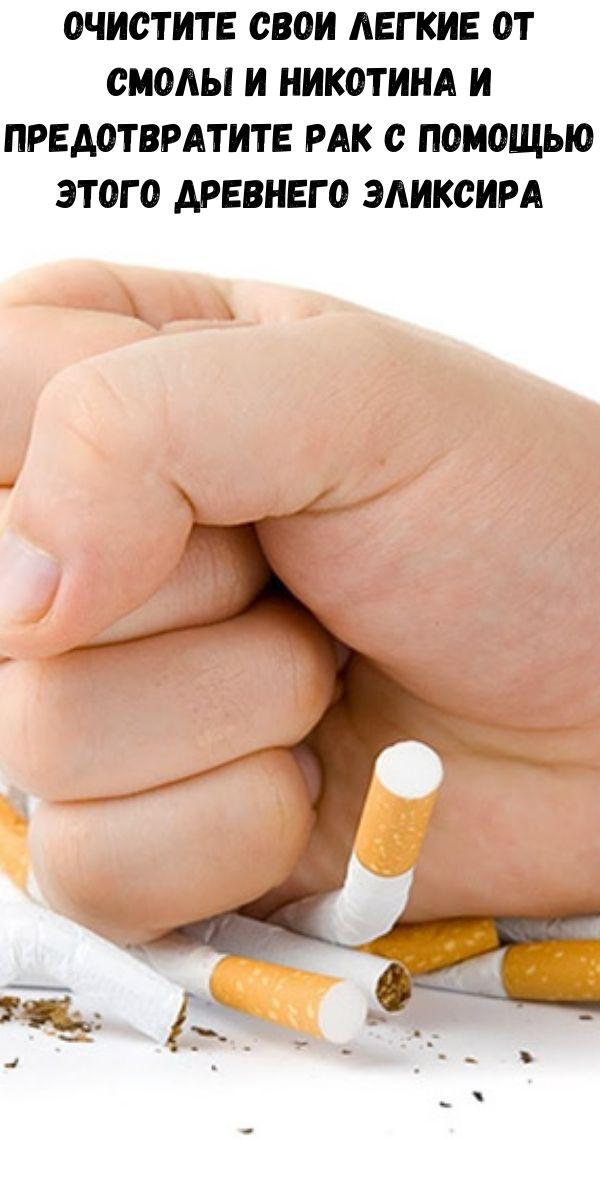 Очистите свои легкие от смолы и никотина и предотвратите рак с помощью этого древнего эликсира