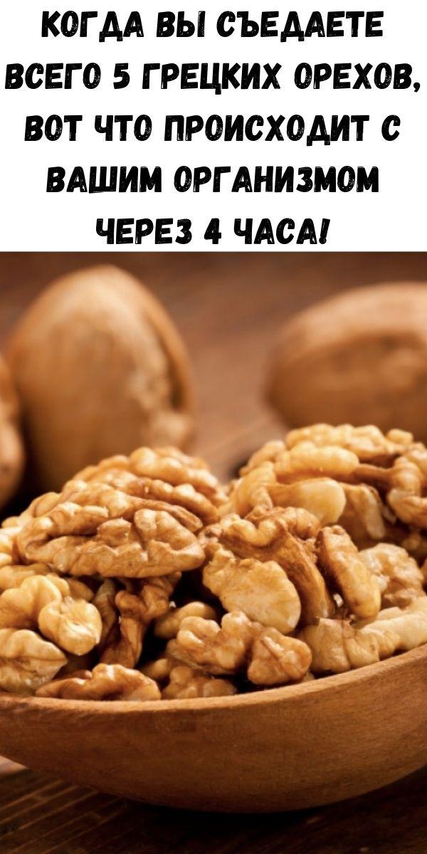 Когда вы съедаете всего 5 грецких орехов, вот что происходит с вашим организмом через 4 часа!