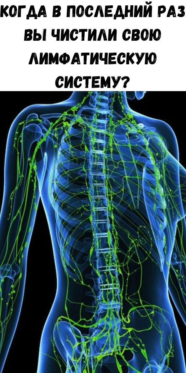 Когда в последний раз вы чистили свою лимфатическую систему?