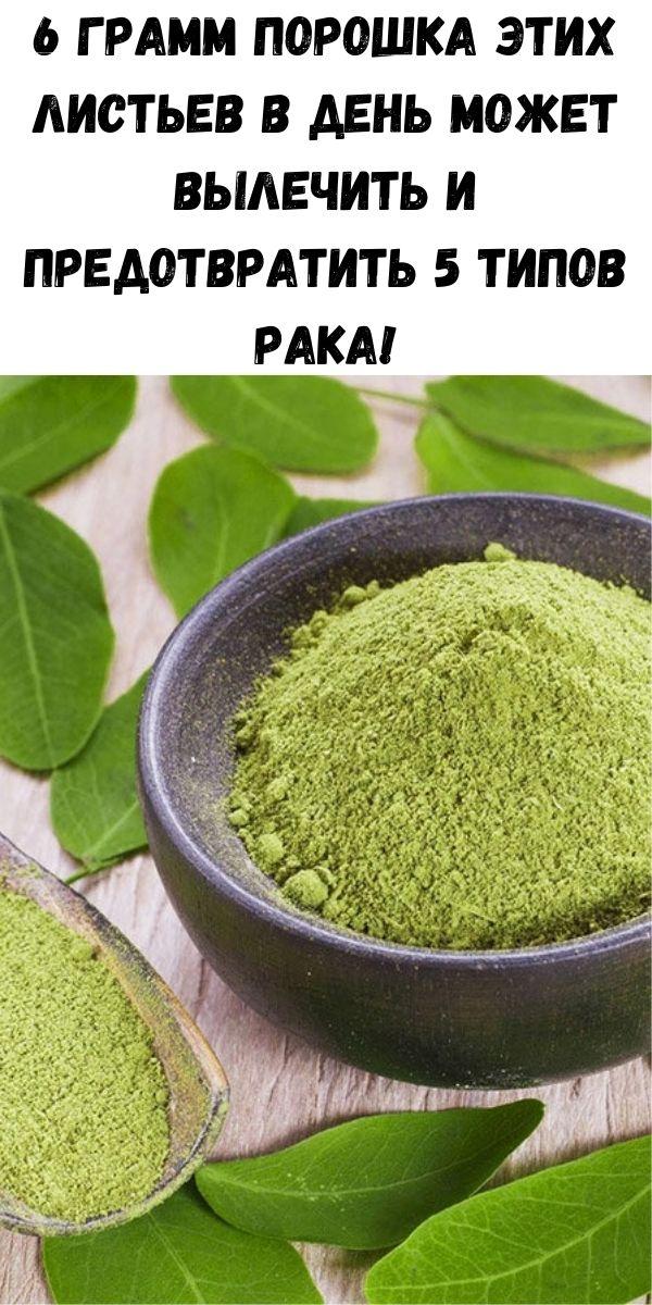 6 грамм порошка этих листьев в день может вылечить и предотвратить 5 типов рака!