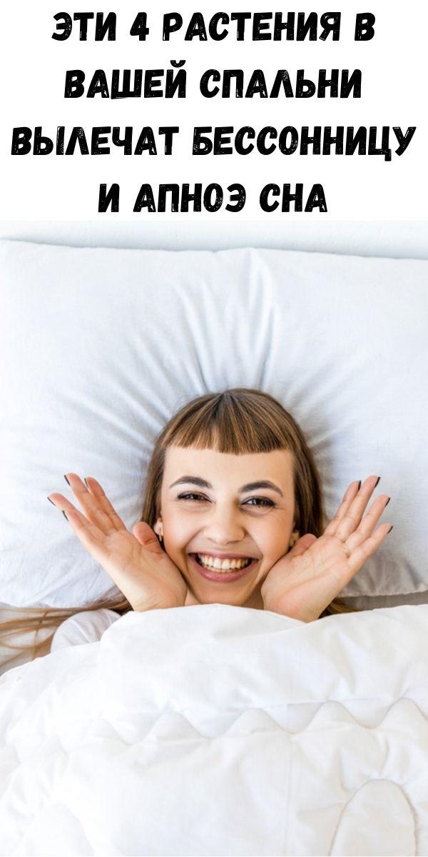 Эти 4 растения в вашей спальни вылечат бессонницу и апноэ сна
