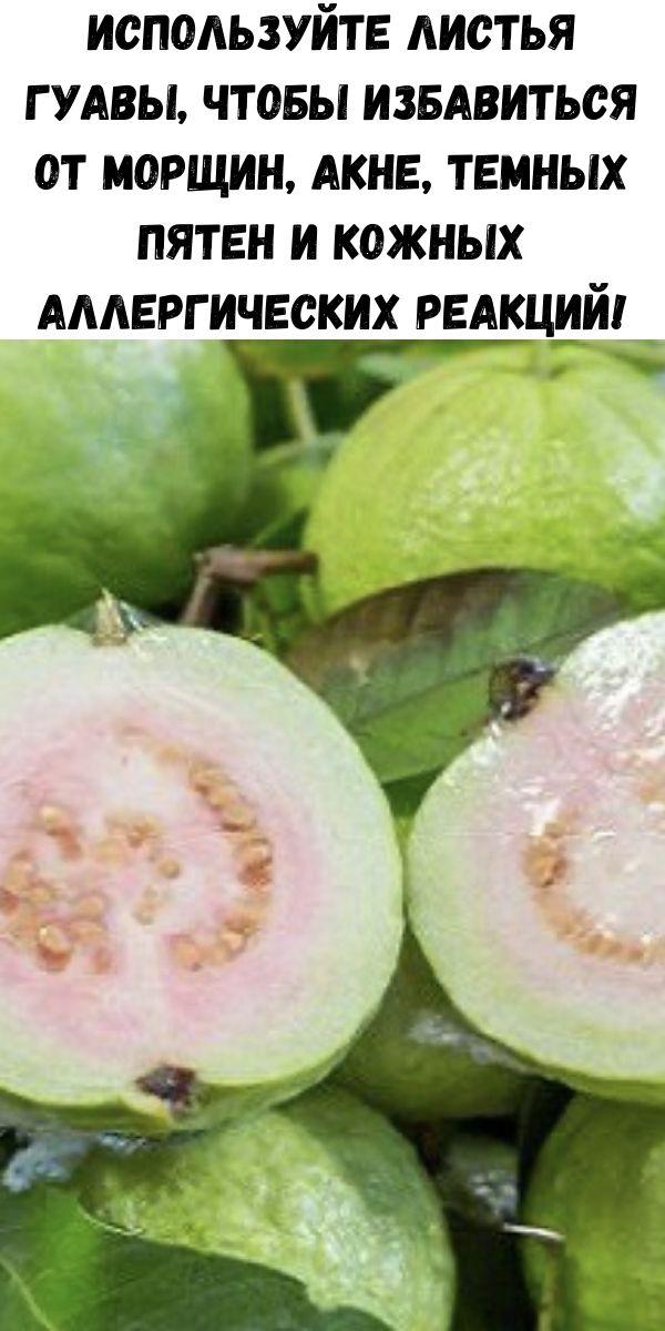 Используйте листья гуавы, чтобы избавиться от морщин, акне, темных пятен и кожных аллергических реакций!