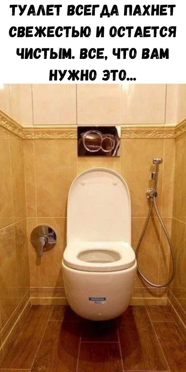 Туалет всегда пахнет свежестью и остается чистым. Все, что вам нужно это...