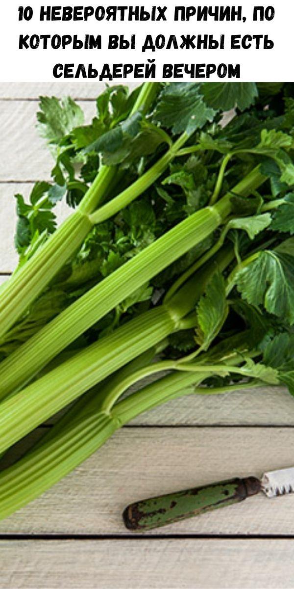 10 невероятных причин, по которым вы должны есть сельдерей вечером