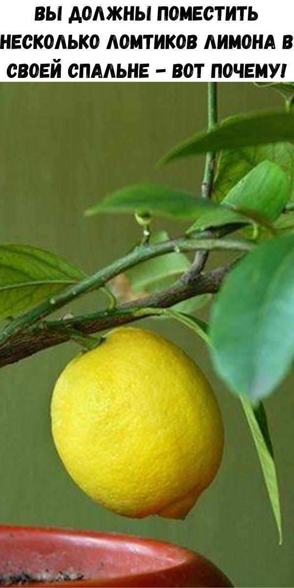 Вы должны поместить несколько ломтиков лимона в своей спальне - вот почему!