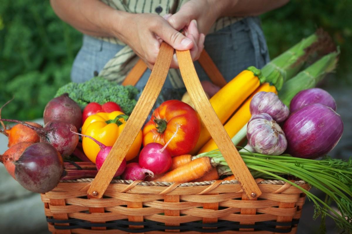 Советы о том, как начать диету на основе растений