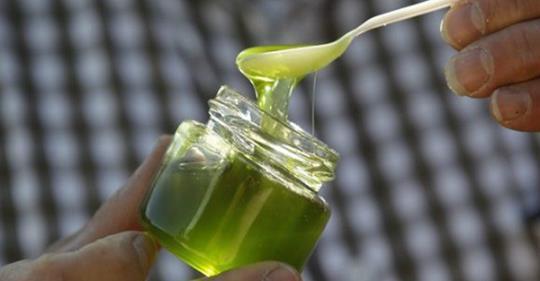 Вы должны употреблять алоэ вера, лимон и мед таким способом – это лучшее средство для лечения колита, гастрита, язв, запоров и других проблем