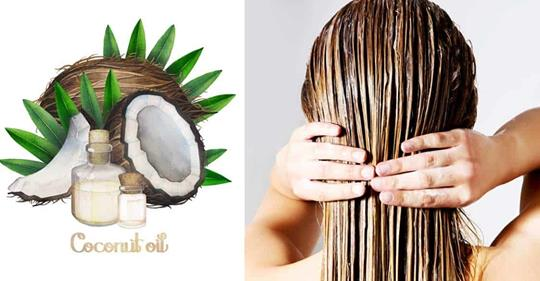 Топ-5 преимуществ кокосового масла для роста волос